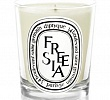 Freesia Candle Diptyque