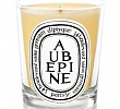 Aubepine Candle Diptyque