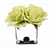 Big Diffuseur de Roses Green & Cube white Herve Gambs Paris
