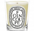 Foin Coupe Candle Diptyque