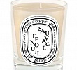 Fenouil Sauvage Candle Diptyque
